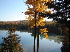 Gorgeous North Blue Lake view in Kalkaska