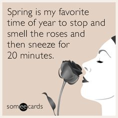 Spring is my favorite time of year to stop and smell the roses and then sneeze for 20 minutes.