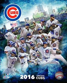 2016 Chicago Cubs Team Composite Authentic Photo World Series Champions Chicago Cubs Fans, Chicago Cubs World Series, Chicago Cubs Baseball, Baseball Bats, Baseball Stuff, Baseball Players, Baseball Field, Espn Baseball, Baseball Display