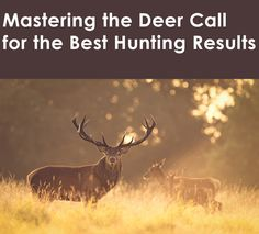 Experienced hunters should not be afraid of using a deer call. A deer call master will always have the best results and the biggest bucks. Deer Calls, Hunting Season, Scores, Good Things, Tips, Fishing, Peaches, Pisces, Gone Fishing