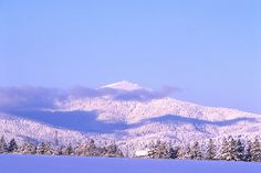 Gorgeous Mt. Spokane topped with fresh powder. Located just 30 minutes  away from downtown Spokane.