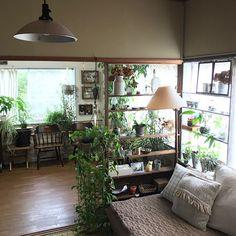 Green Interior Design, Japanese Interior Design, Bathroom Interior Design, Interior Design Inspiration, Studio Apartment Decorating, Apartment Interior, Home Living Room, Living Room Designs, Small Appartment