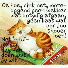 Lekker Dag, Good Knight, Afrikaanse Quotes, Goeie Nag, Good Night Sweet Dreams, Good Night Quotes, Morning Wish, Strong Quotes, Cute Quotes