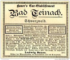 Original-Werbung/ Anzeige 1897 - BAD TEINACH IM SCHWARZWALD - ca. 90 x 75 mm