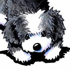 Original Art Playful Havanese Dog Breed ACEO by KiniArt on Etsy, $40.00