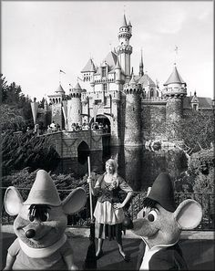 vintage cinderella and mice at disneyland. Notice how she isn't SUPER skinny....