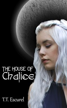 http://www.amazon.com/House-Chalice-Sorcerers-Specters-Auronia-ebook/dp/B00JH1X58C