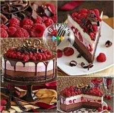Delicioso pastel de chocolate con frambuesas Hoy queremos ofreceros una receta de un delicioso pastel de chocolate, la …