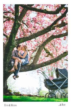 Baby announcement photo. Sitting in a tree, k-i-s-s-i-n-g. http://www.rothcouple.com/