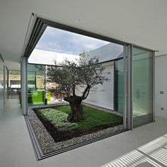 Discover amazing courtyard designs from all over the world, with indoor trees, outdoor furniture and lighting, retractable walls, patios and atrium ceilings. Interior Garden, Home Interior Design, Interior Architecture, Interior And Exterior, Interior Doors, Modern Interior, Contemporary Architecture, Kitchen Interior, Room Interior