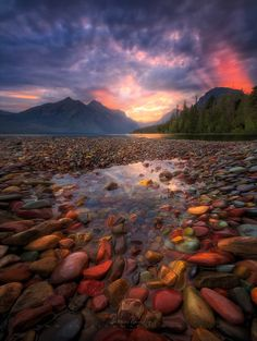 Rockpool - The largest lake in Glacier National Park - Lake Mcdonald.