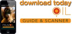 Palm Oil Guide & Scanner Orangutans, Oil Industry, Palm Oil, Cruelty Free, Death, Action, Key, Amazing, Animals
