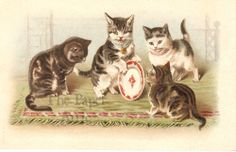 Helena Maguire Cats Kittens with Plate Antique Vtg EARLY French Chromo Postcard. The kitten must be an expert in antique china!
