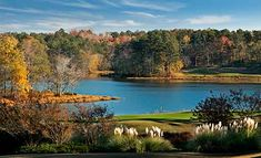 Grand National.  Part of the famed RTJ golf trail.  Wonderful place for a golf trip.  Opelika, AL.