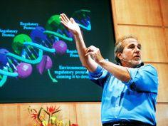 Американский генетик Брюс Липтон утверждает, что с помощью истинной веры, исключительно силой мысли человек и в самом деле способен избавиться от любой болезни. И никакой мистики в этом нет: исследования Липтона показали, что направленное психическое воздействие способно менять… генетический код организма.
