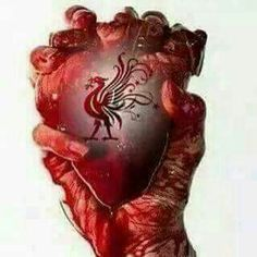 Want To Know About Football? If you're trying to be better at football, then you probably want to learn all the information you can. Liverpool Tattoo, Ynwa Liverpool, Liverpool Football Club, Liverpool Fc Wallpaper, Liverpool Wallpapers, Lfc Tattoo, This Is Anfield, Rangers Fc, European Soccer