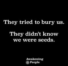 They tried to bury us. They didn't know we were seeds Abuse Survivor, Live Laugh Love, Bury, Note To Self, Awakening, Make Me Smile, Seeds, Encouragement, Cards Against Humanity