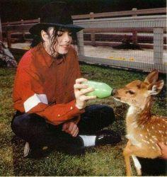 Michael Jackson & baby deer!!! so cute.