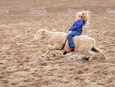 Enthusiastic Mutton Bustin Rodeoing Little Girl photo libre de droits