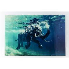 Kare Design Schilderij Swimming Elephant, 120 x 180 cm Home Bild, Design Bleu, Elephant Pictures, Angel Drawing, Elephant Tattoos, Daily Drawing, African Elephant, Elephant Elephant, Glass
