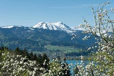 Der Frühling ist angekommen im Tegernseer Tal. Auch wenn die Gipfel der umliegenden Berge noch mit Schnee bedeckt sind, ist es im Tal angenehm warm