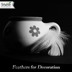 Schuman Feathers - Quality Wholesale Feathers to buy in the USA Pheasant Feathers, Centre Pieces, Photo Art, Black And White, Creativity, Crafts, Photography, Decoration, Party