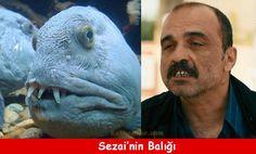 Sezainin Balığı