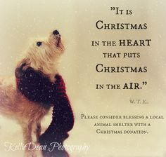 Pin by Ericka Toombs on ❄Christmas/Winter❄ | Pinterest | Winter