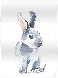 Image Result For Easy Watercolor Painting Animals Bunny