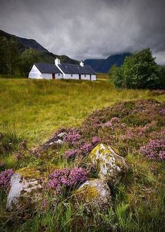 Scotland: The Cottage on the Moor