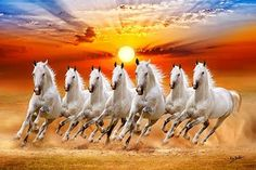 7 Best Horse Wallpaper Images Horse Wallpaper Wallpaper Seven Horses Painting