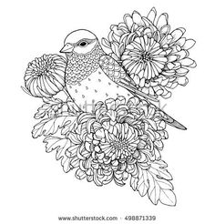 Patterned bird, sitting on chrysanthemum branch, zentangle page for adult coloring book