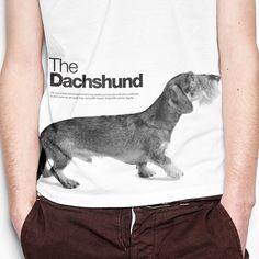 Dachshund T-shirt SELVA