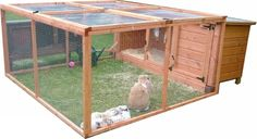 Rabbit hutch +run in front Image 1