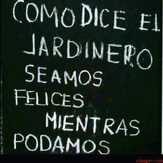 Fool Quotes, Wise Quotes, Funny Quotes, Language Quotes, Mexican Humor, Quotes En Espanol, Love Phrases, Caption Quotes, Positive Quotes For Life