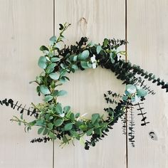 Eucalyptus is in the shop! : )