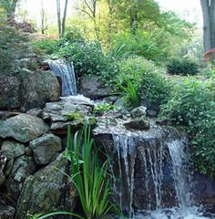 1000 Images About Waterfall Ponds On Pinterest Pond