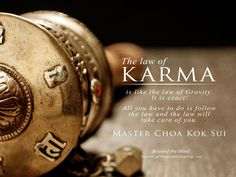 """The law of Karma is like the law Gravity. It is exact! All you have to do is follow the Law and the Law will take care of you."" Master Choa Kok Sui"