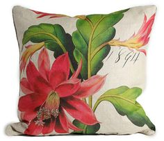 Christmas Cactus Botanical Pillow
