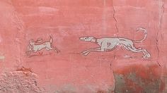 On the wall of the Medina in Marrakech