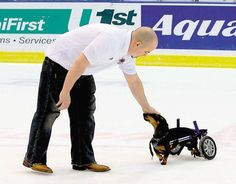 Tiki, a 6-year-old dachshund, runs around on the ice for a few minutes at Cal Farley Coliseum.