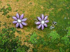 Margarétka fialová, mini