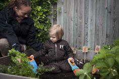 My First Fiskars työkalulaatikko ja pienet puutarhatyökalut avuksi kasvimaalla