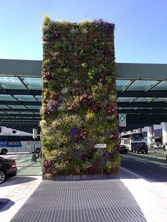 Realizzazione parete verde verticale - Aeroporto Malpensa (VA)