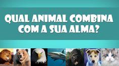 Qual animal combina com a sua alma?