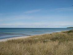 """Von der schönen Ostseeinsel schwärmen Dichter, Maler und Schauspieler seit Jahrzehnten. Sie wurde besungen (""""Hoch stand der Sanddorn am Strand von Hiddensee"""" ) …"""