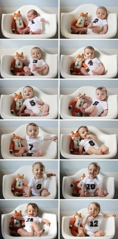 """If you're a first time mom in recent years, you probably know a growing trend is to capture each one of your baby's month """"birthdays"""" by taking a cute photograph. There are so many ways to do this that are unique …"""
