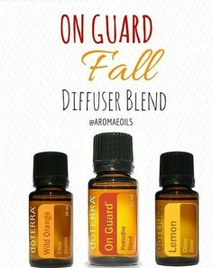 On guard fall blend