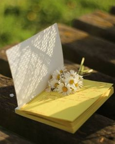 Book Aesthetic, Flower Aesthetic, Cute Wallpapers, Wallpaper Backgrounds, Marie Von Ebner Eschenbach, Beautiful Flowers, Beautiful Pictures, Daisy Love, Daisy Daisy