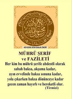 Stark Sein, Allah, Life